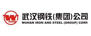 武汉钢铁有限公司