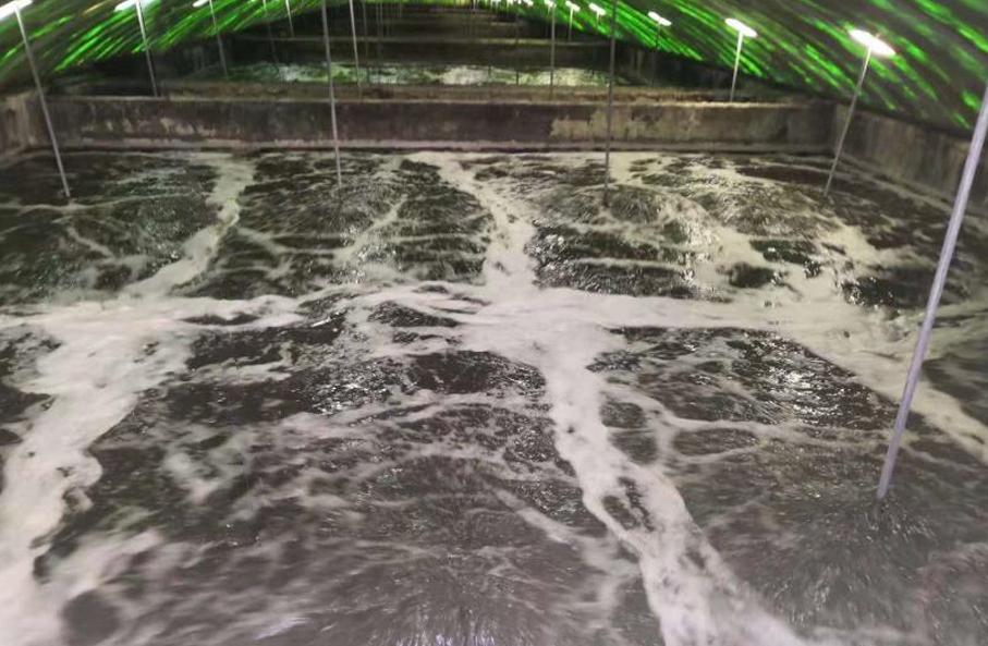 制药废水工程