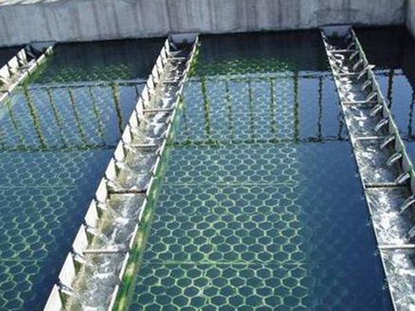 斜板(管)澄清池