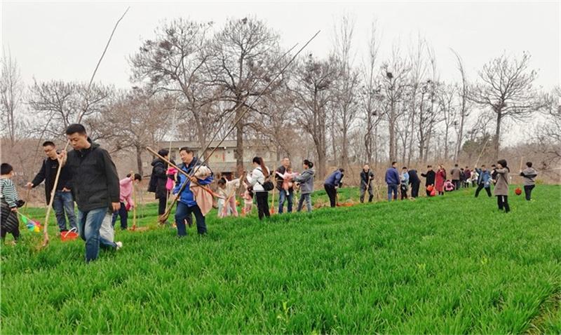 國控建設集團開展義務植樹活動