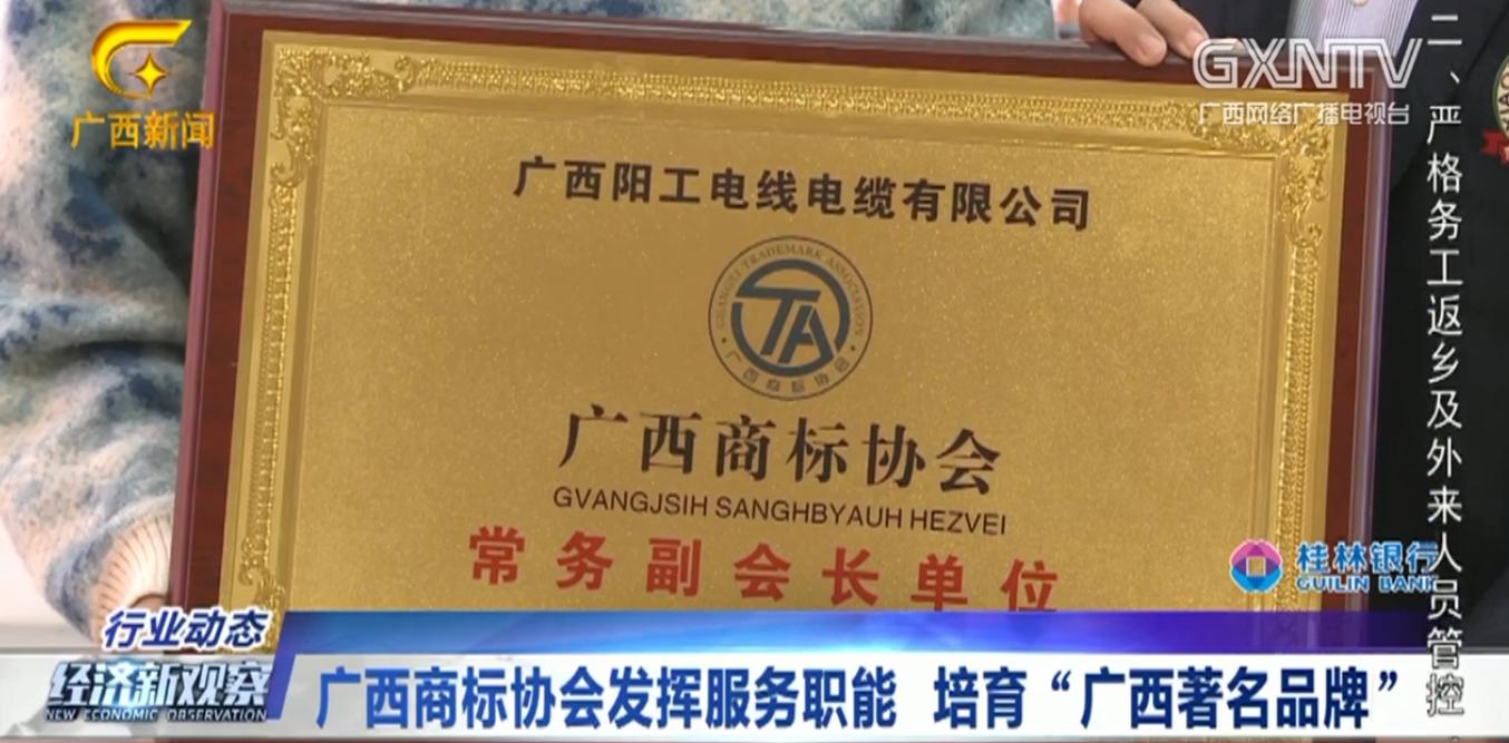 """廣西光棍视频電線電纜有限公司榮獲""""廣西著名品牌"""""""