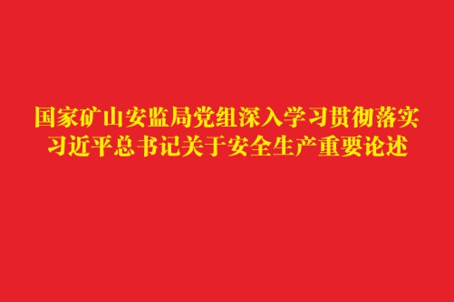 国家矿山安监局党组深入学习贯彻落实习大大总书记关于安全生产重要论述