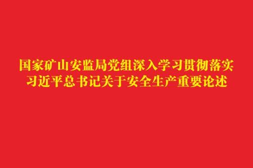 国家矿山安监局党组深入学习贯彻落实习近平总书记关于安全生产重要论述