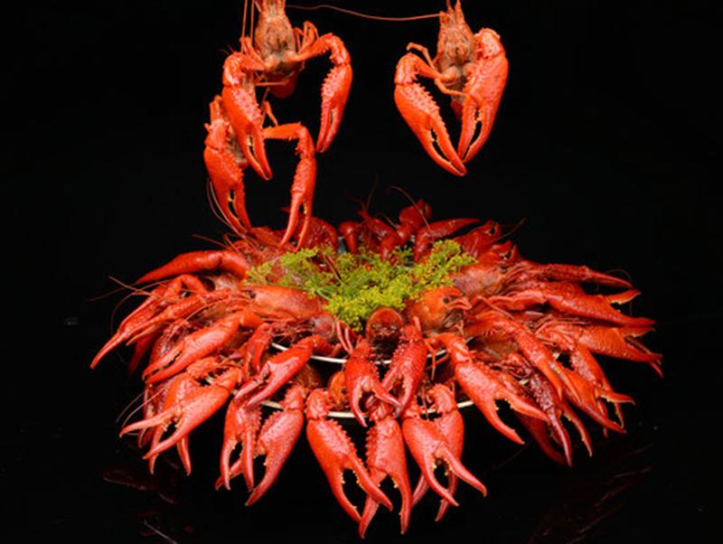欧式茴香汤料整肢虾