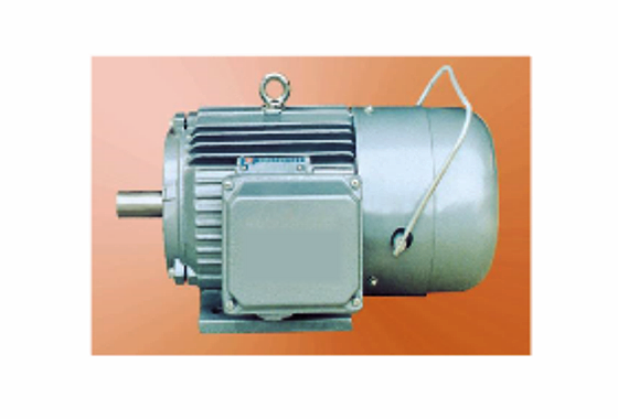 YEJ2系列電磁制動三相異步電動機