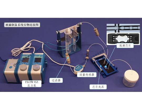 微流控液滴制备系统