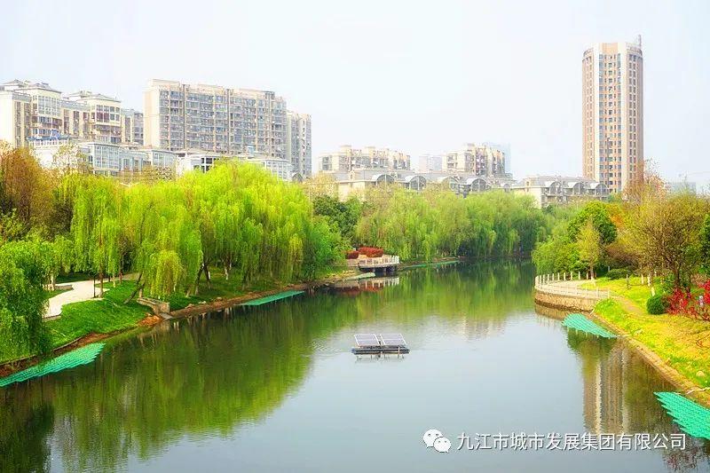 春風又綠龍開河