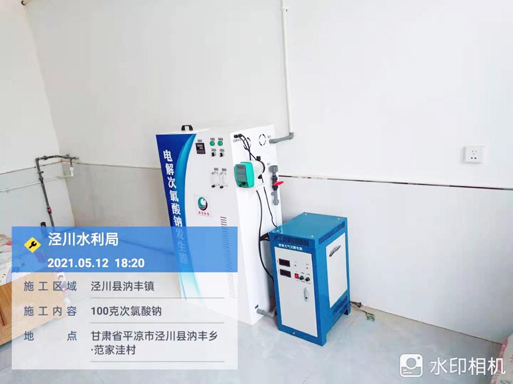 甘肅省平涼市涇川縣水利局100克次氯酸鈉發生器