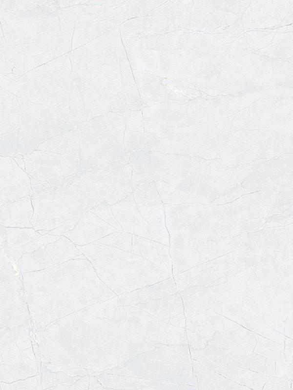 ZP36005A