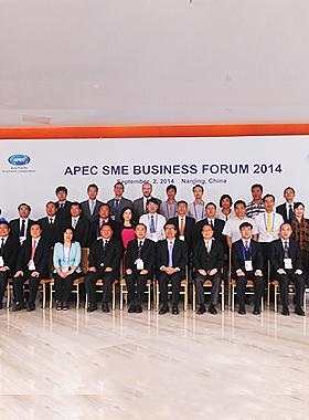 南京APEC中小企业论坛会议-彭华20140825