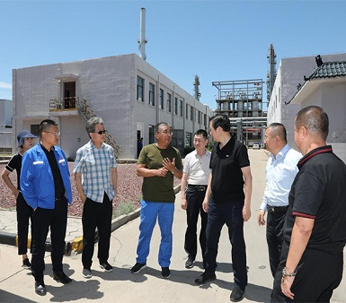 榆林市委常委、副市长李二中到m6米乐app能源公司调研