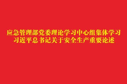 应急管理部党委理论学习中心组集体学习  习近平总书记关于安全生产重要论述
